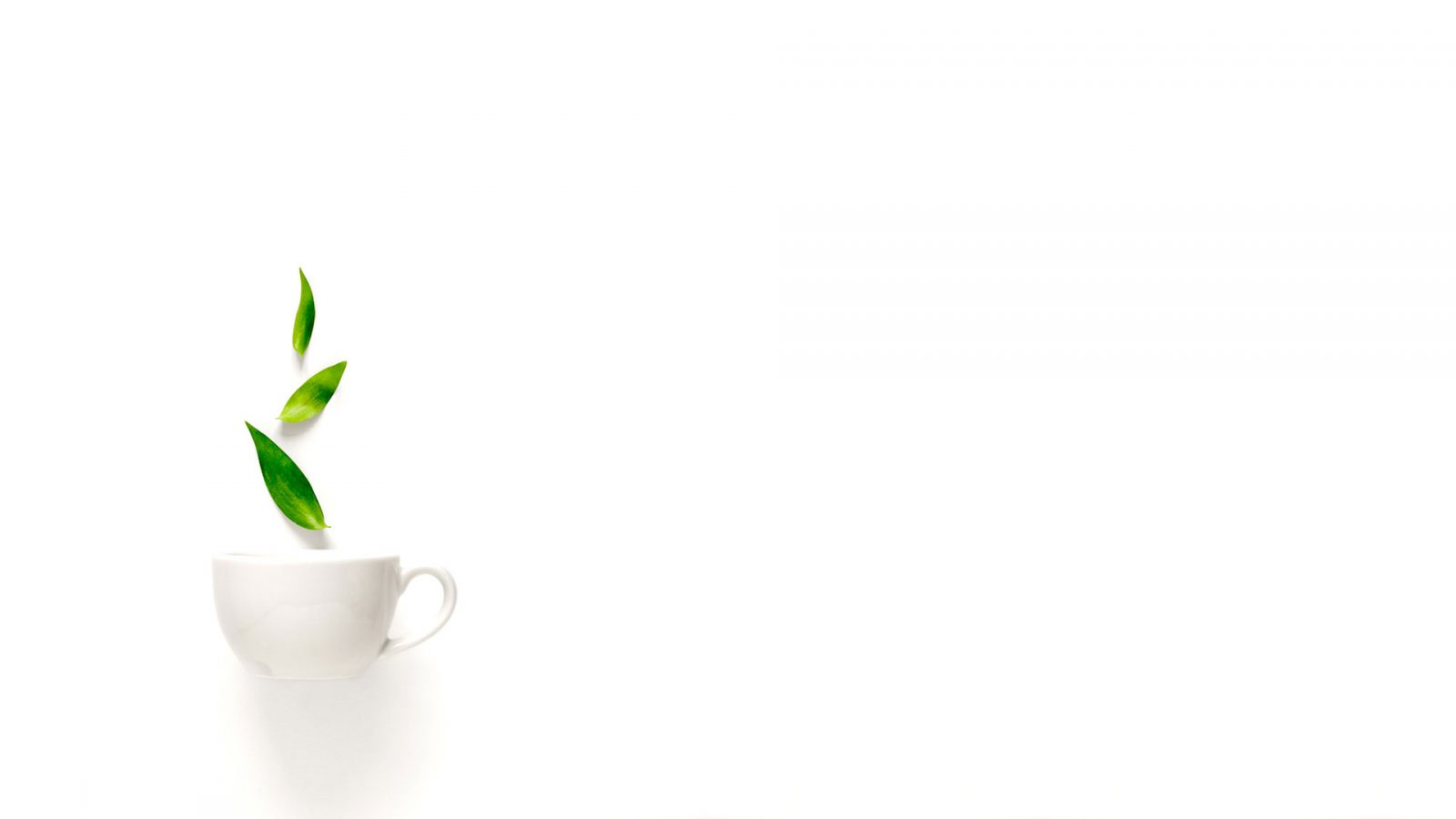 10 tea benefits that you may not know!